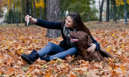 8 Tips for Taking the Perfect Photo